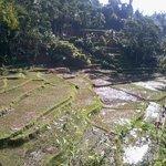 Scenery of Kampung Naga