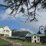 Savoy grounds panorama