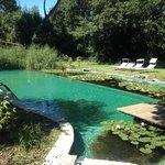 bio piscina
