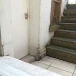 Mold and foulness outside the bedroom window. No access to the yard