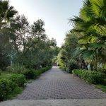 Giardini e vialetti sempre curati e puliti