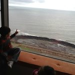 kids loved the view