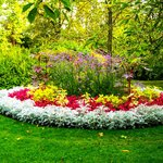 A flower bed that really caught my imagination in The Botanical Gardens