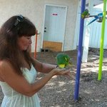 Love feeding the birds