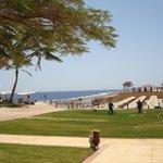 Widok na plażę ogólnodostępną