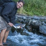 Me catching salmon by hand from a nearby stream during the spawning season