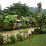 Old style basic bungalows for about 250 baht