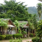 Bungalows with misty mountain view