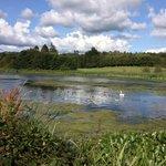 The artificial lake at Cally Palace