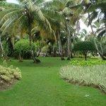 O resort é cheio de áreas verdes como esta