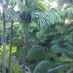 Nihi Kai gardens