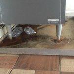 Rust under ice maker