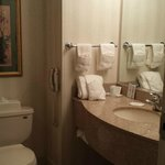 Foto de Comfort Inn And Suites - East Greenbush