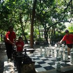 the big chessboard inside the Rainforest Park