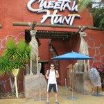 De frente ao Cheetah Hunt