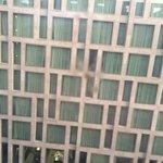 Zimmeraussicht aus einem von innen dreckigen Fenster!