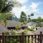 View from Garden Villa