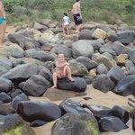Praia da Silveira, Garopaba