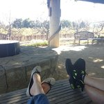 Enjoying the day at Heitz on their beautiful patio!