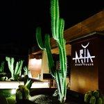 -ARIA- Steak House