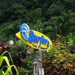 Surfers Beach Restaurant