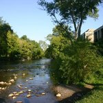 River alongside the hotel