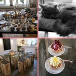 Breakfast (for two), Mieze (the resident cat) and the cupcake cafe