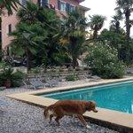Foto de Albergo Garni Villa Moretti
