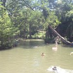 The swimming hole.