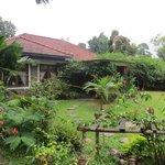 Beautiful gardens of Kandyan manor