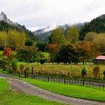 farm grounds