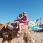 great camel rides
