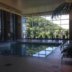 View of the indoor pool area. Landscape is gorgeous