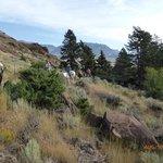 Rimrock Ranch Foto