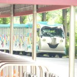 веселые паровозики довозят до парка