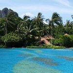 Infiniti Pool overlooking ocean