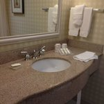 Hilton Garden Inn Groton, bathroom