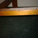Mold on a chair