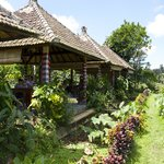 Pangkon Bali (Rumah Makan & Agrowisata)