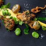 Broccoli tempura (109214920)