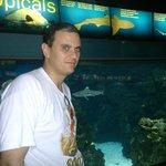 Aquarium Barcelona.