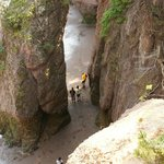 Hopewell Rocks during low tide