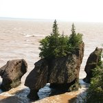 Receding water at Hopewell Rock formation