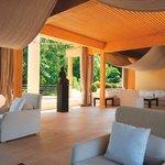 Bonsai Lounge
