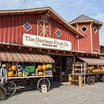 The Davison Fruit Co.