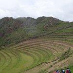 Inca terraces