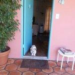 Toby on guard duty
