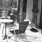 La terrasse partagée sur 3 chambres et ses plantes mortes