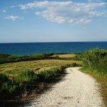 Stradina che conduce alla spiaggia di mottagrossa