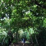 El lugar más virgen de toda Costa Rica!